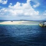 西表島からボートで10分くらいで到着、バラス島。 #西表島 #バラス島 #サンゴ #石垣島 #ishigakijima #iriomotejima